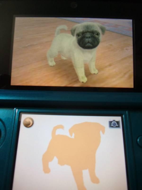 3DS-4.jpg