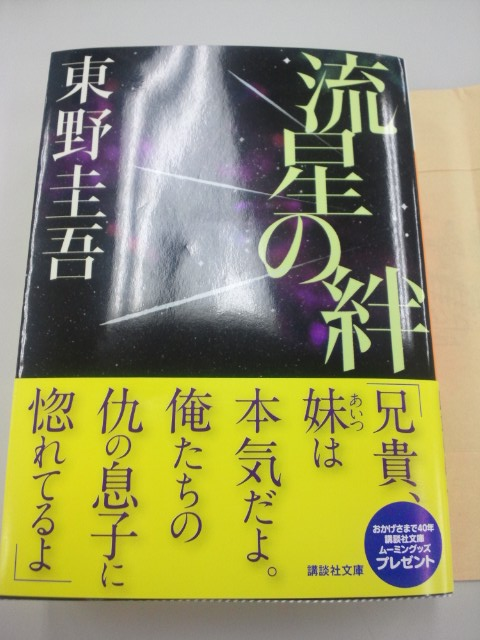 ryuseinokizuna.jpg